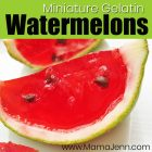 miniature jello gelatin watermelon slices with surprise ingredients