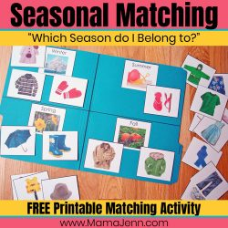 Seasonal Matching File Folder Activity