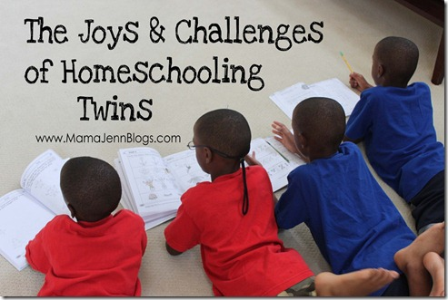 Homeschooling Twins {The Joys & Challenges}