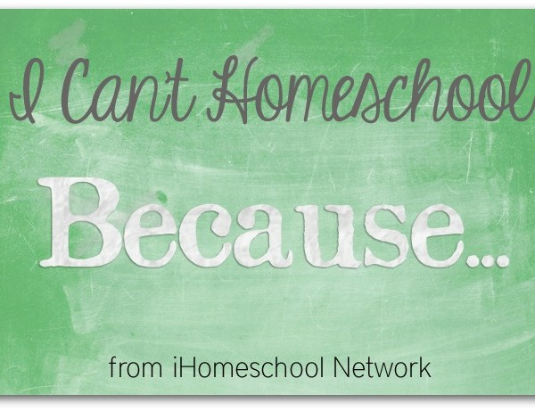 I Can't Homeschool Because I Have Twins