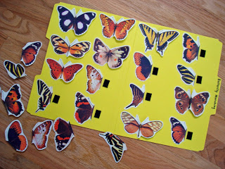 Butterfly {Matching} File Folder Game
