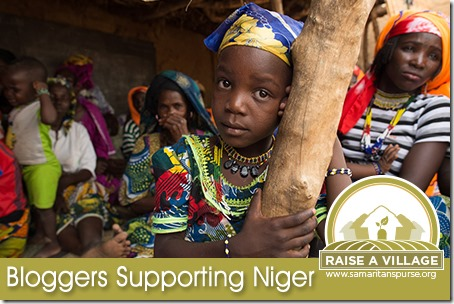 Samaritan's Purse Raise a Village: Bloggers Supporting Niger
