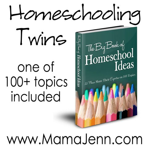 Big Book Blog Tour: Homeschooling Twins