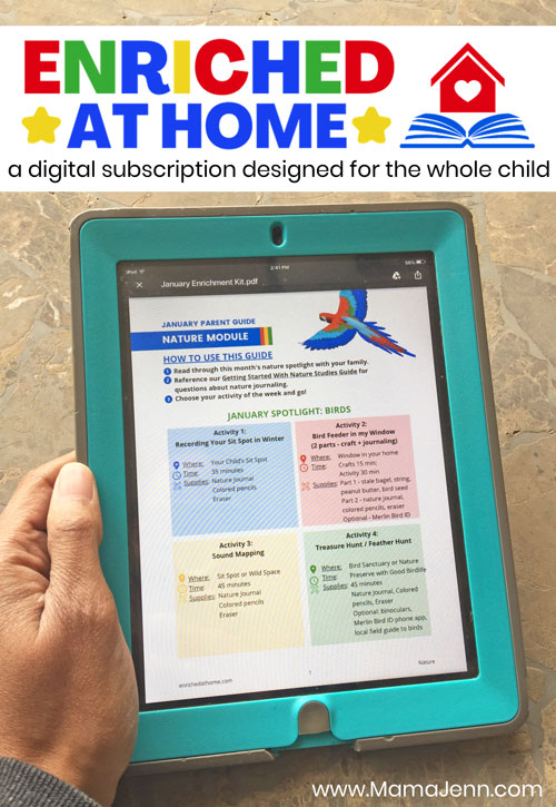 Enriched at Home Whole Child Education